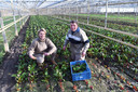 Broer Cees en zus Janneke Klootwijk in de kas met speciale planten.