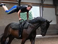 Cuijkse ruiter met paard Wim naar WK voltige: 'Hij moet er echt zin in hebben, anders wordt het niks'