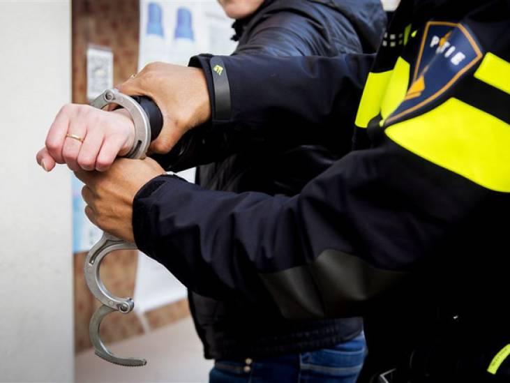 Steen tegen politiebus in Den Bosch: 19-jarige jongen aangehouden