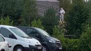 """Meisje (6) dood teruggevonden in Park Molenheide: """"Ze is wellicht gestruikeld en hard neergekomen"""""""