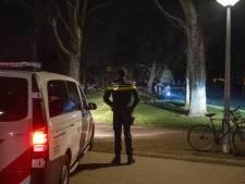 Groot feest in Amsterdams Vondelpark was 'spontane actie'