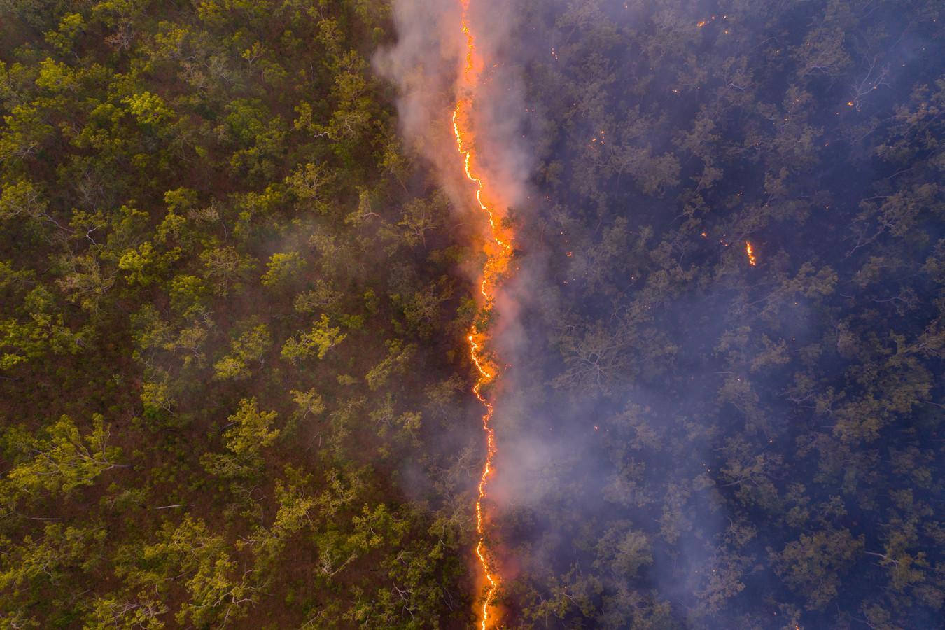 'Bushfire': de winnende foto van Robert Irwin.