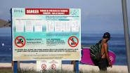 Haaien op diervriendelijke manier van de kust verjagen? Het kan