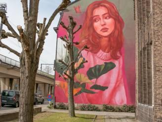 Muurschildering 'Daydream' van 110 vierkante meter siert gevel aan Spoorweglaan