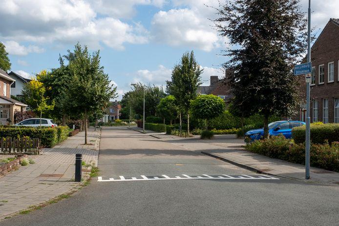 Het rustige buurtje in Wezep stond zaterdagmiddag op zijn kop, toen twee inbrekers een auto meenamen en een bewoner bedreigden met een mes.
