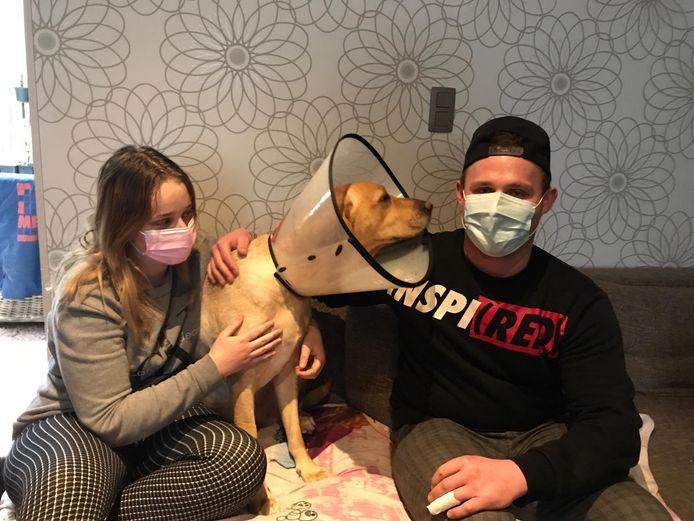 Broer en zus Laureyns samen met de gewonde labrador Nora. Let ook op de vingers van Guillian, die door de aanval zijn ingepakt.