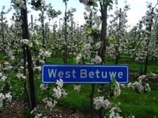 Historische keuze voor West Betuwe