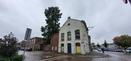 Dordrecht mag moerascipres nog niet kappen