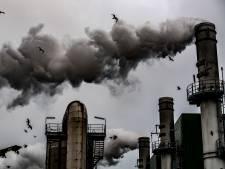 KNNV keert zich tegen windmolens op de Maasvlakte: de natuur komt in de knel