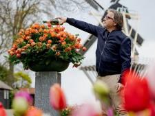 Guus Meeuwis doopt eigen tulp in Keukenhof: 'Het is een eer'