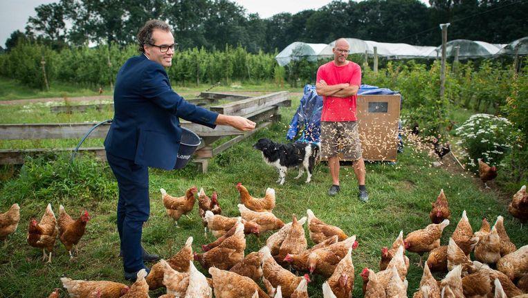 Wethouder Dierenwelzijn Ivens voert de kippen, en tuineigenaar Sturkenboom ziet dat het goed is. Beeld Mats van Soolingen