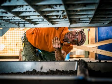 Amersfoortse stadswormen van Edgar ruimen afval op en poepten een recordgewicht aan mest uit