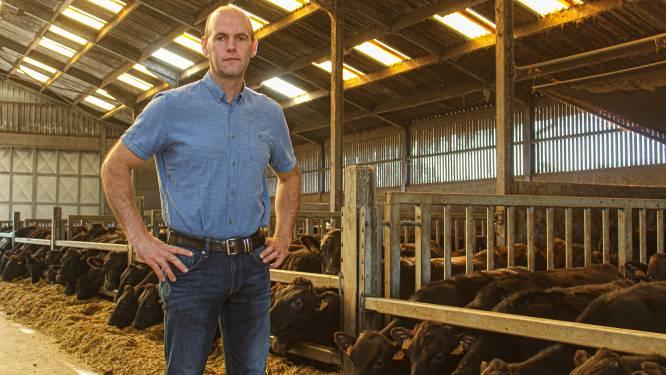 Hof van Ossel haalt 350.000 euro op aan leningen voor uitbreiden Wagyu-runderen
