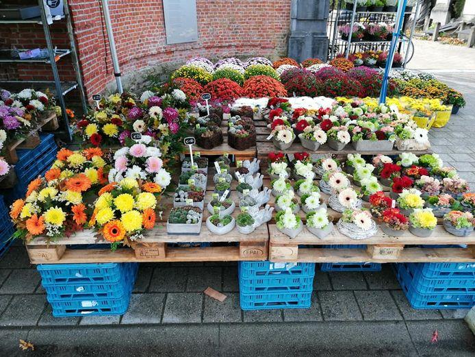 Alle bloemen werden gestolen in de nacht van vrijdag op zaterdag.