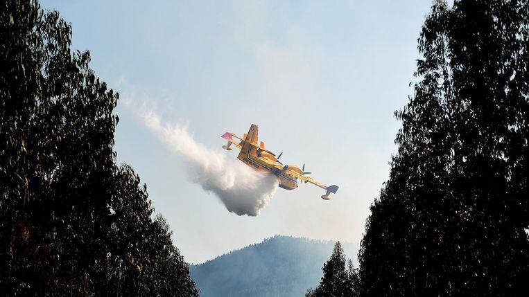 Een blusvliegtuig aan het werk in Portugal. Beeld afp