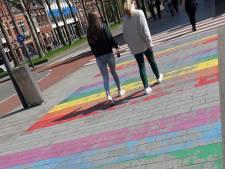 Weer gaten in regenboogzebradpad Den Bosch: D66 wil gekleurde stenen of verlichting
