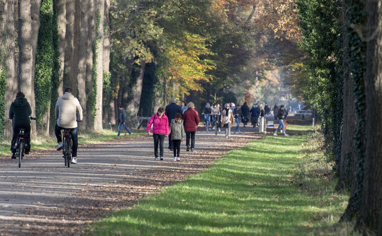 De Gravenallee is al sinds jaar en dag een lustoord voor wandelaars. Met dank aan de grafelijke familie Van Rechteren Limpurg.