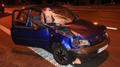 Twee kleuters ongedeerd bij zware crash tegen bestelwagen op E17