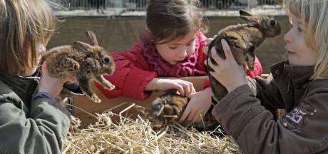 SP Oss pleit voor behoud van natuurlessen op Slabroek: 'Bos is anders dan kinderboerderij'