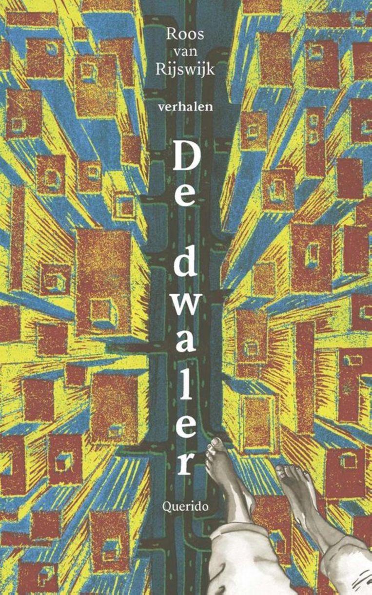 Roos van Rijswijk, 'De dwaler', Querido, 208 p., 18,99 euro. Beeld rv