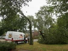 Code geel van kracht in Brabant, stevige onweersbuien en hagel in provincie