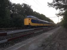 Minder treinen tussen Amersfoort en Apeldoorn door seinstoring