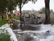 Omwonenden redden man uit auto die daarna in brand vliegt