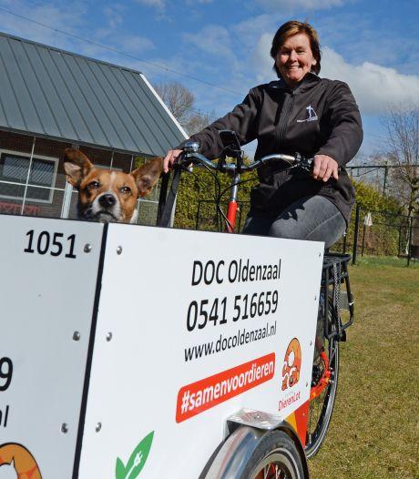 Loopt de hond moeilijk? Dan laat asiel Oldenzaal het dier uit in een elektrische bakfiets
