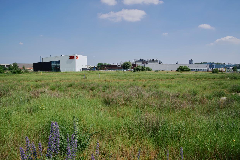 Zwijndrecht staat in academische middens al tien jaar bekend als hotspot van PFOS-vervuiling door de 3M-fabriek daar.  Beeld Joris Casaer