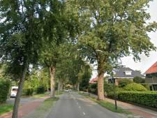 Plotselinge bomenkap schiet bewoners Nieuwe Bussumerweg in Huizen in het verkeerde keelgat
