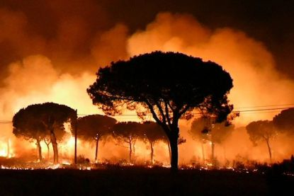 Bijna tweeduizend toeristen geëvacueerd door bosbrand in Spanje