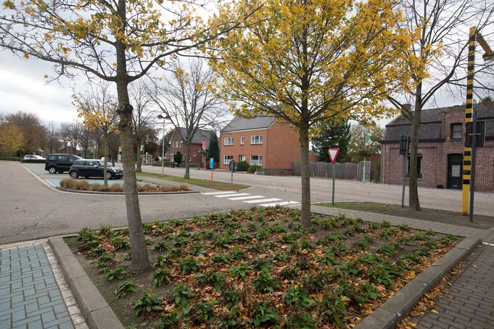 De stad Hamont-Achel wil inzetten op zorgzame buurten waar iedereen zich thuis voelt.