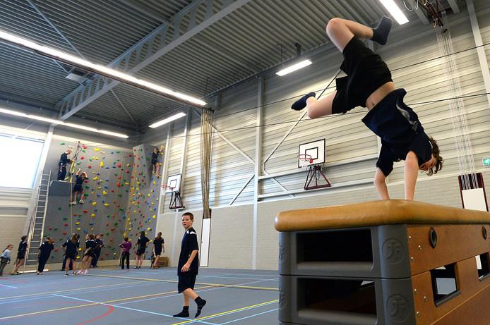 Sporthal Dongemond in Raamsdonksveer krijgt er mogelijk een 'kleine broer' bij, een stukje verderop bij de middelbare school.