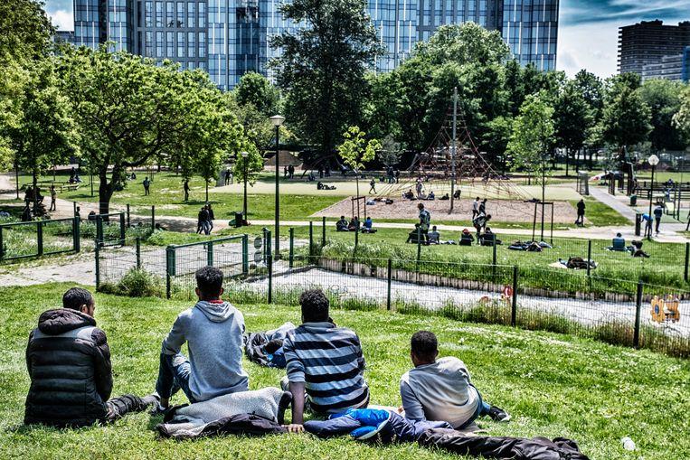 Migranten in het Brusselse Maximiliaanpark. Beeld Tim Dirven