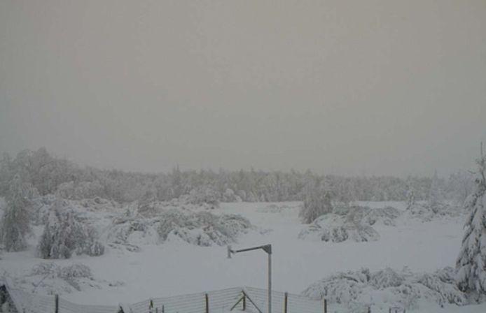 In Mont Rigi in Luik ligt eveneens een dik sneeuwtapijt.