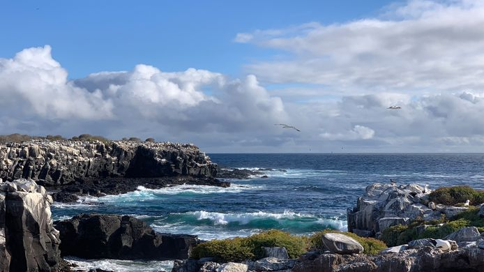 De Galapagoseilanden.