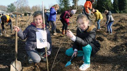 Kinderen planten zelf boompjes