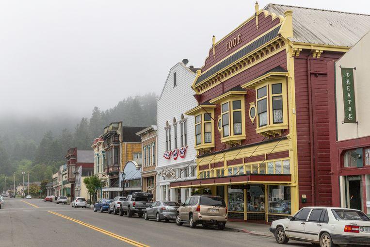 Ferndale: kleur onder de alomtegenwoordige mist. Beeld JONATHAN VANDEVOORDE