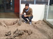 De nieuwe publiekstrekker in Barneveld: een 'dierenontdekpark'