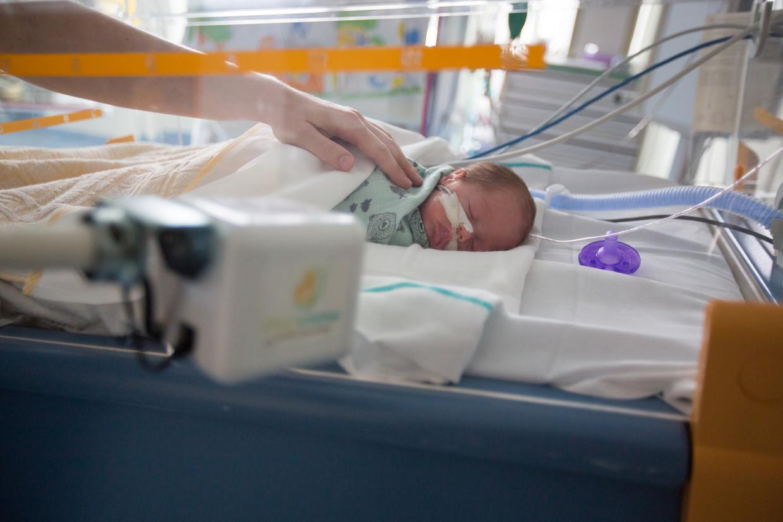 Een prematuur geboren baby in het UZ Brussel.  Beeld Mozkito