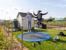 Alphense volkstuintjes plotseling in trek bij jonge gezinnen: 'Ouders kweken aardbeien, wij gaan op de trampoline'