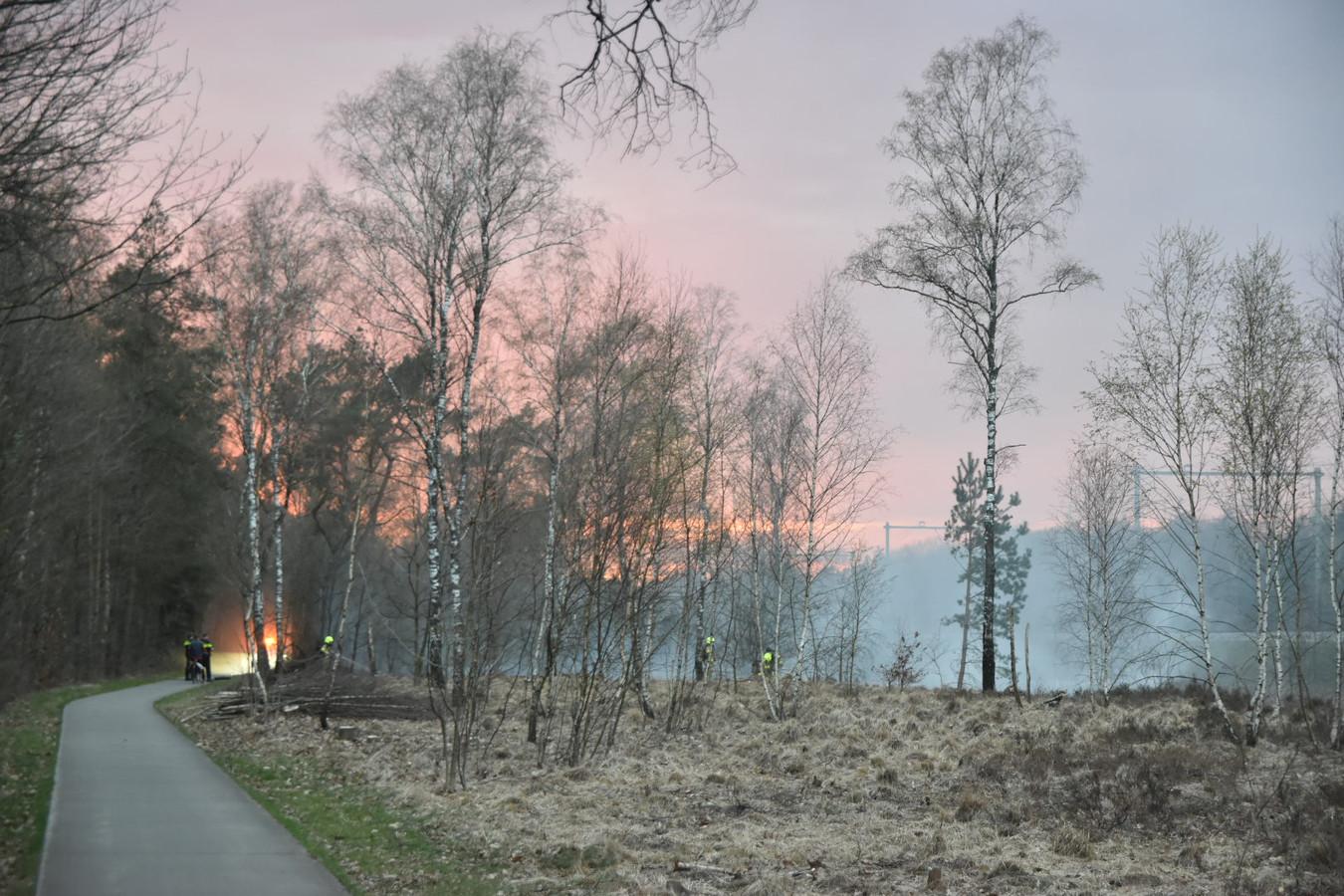 Bosbrand in Wolfheze.