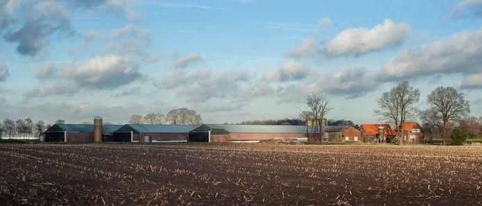 De varkensstallen aan de Kovelsweg in Haaren.