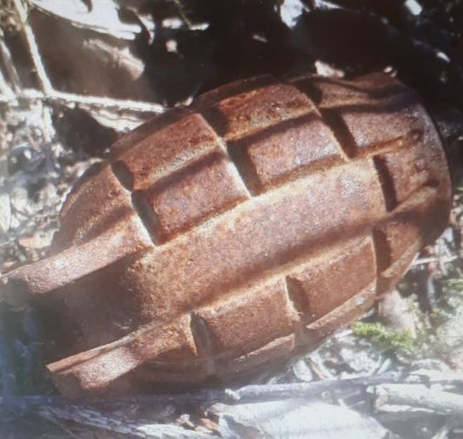 Handgranaat gevonden in Sint Willebrord