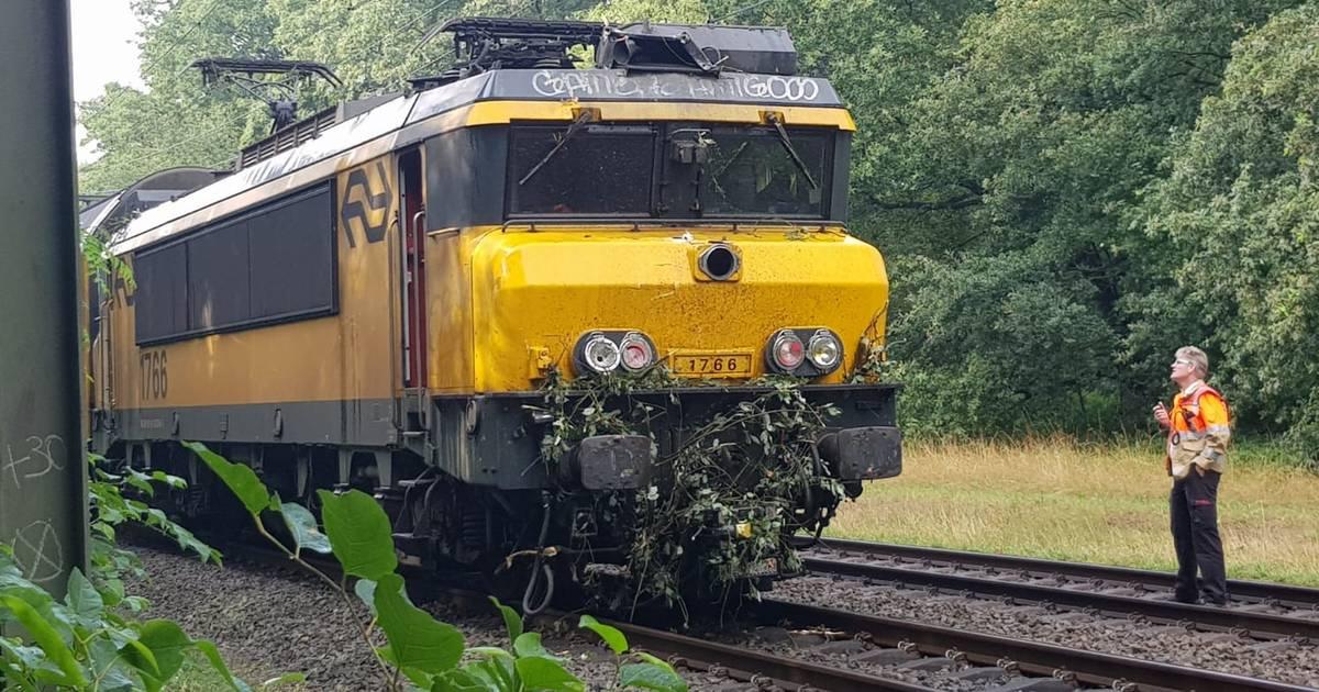 Treinverkeer Deventer-Zutphen plat na aanrijding met boom.
