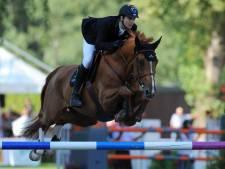 Over privacy en paardenpracht aan de 'paardenboulevard' in Valkenswaard
