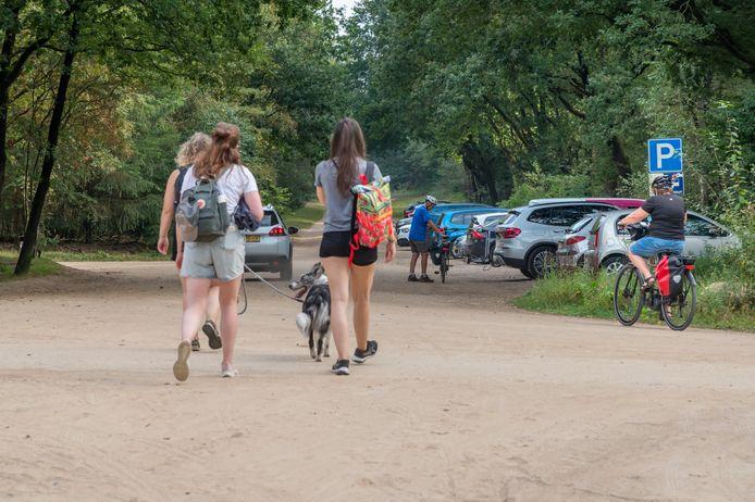 Parkeren in de Veluwse bossen, zoals hier in Ermelo, gaat vanaf volgend jaar geld kosten.