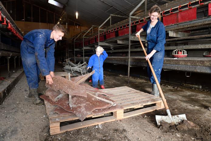 Vrijwilliger Evert Kooij, Gemma van Wolfswinkel (dochter van werknemer van de boer) en vrijwilliger Ellen van de Weerd.