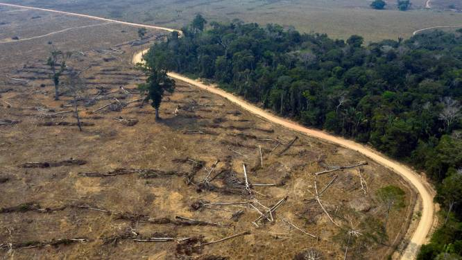 NASA ontwikkelt waarschuwingssysteem om verdere ontbossing regenwouden tegen te gaan