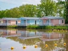 Vakantiepark Molenwaard breidt uit en bouwt deze winter nieuwe huisjes